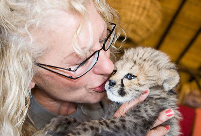 Marietta Van der Merhe Kissing Cheetah Cub